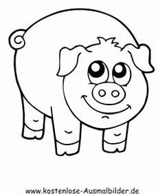 Schwein Malvorlagen Bilder Ausmalbild Schwein 3 Zum Ausdrucken