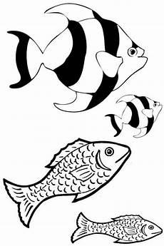 Ausmalbilder Zum Ausdrucken Unterwasserwelt Ausmalbilder Unterwasserwelt Kostenlos Malvorlagen Zum