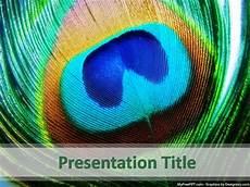 Feather Powerpoint Template Free Peacock Feather Powerpoint Templates Myfreeppt Com
