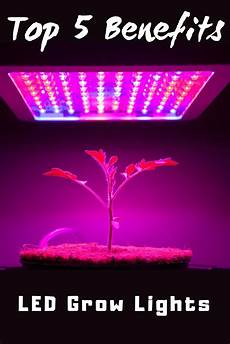 Led Grow Light Giveaway Top 5 Benefits Of Led Grow Lights Gardening Know How S Blog
