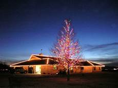 Lakewood Ranch Christmas Lights 15 Best Christmas Tree Pictures Images On Pinterest
