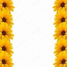 cornice di fiori cornice di fiori gialli foto stock 169 jekaterina k 27958435