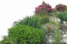 flower bed png flower bed png transparent free for