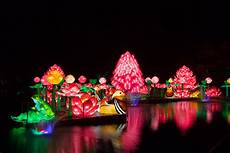 The Zoo Wild Lights Brand New Wild Lights Night Time Attraction Opens In