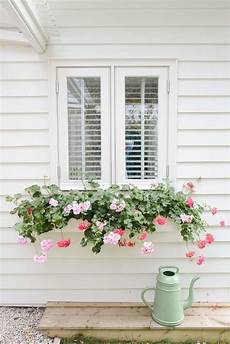 fioriere per davanzale finestra subtle white window box with cascading flowers green