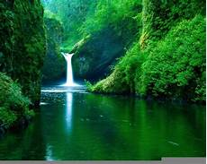 Free Nature Backgrounds Free Nature Backgrounds Pictures Wallpaper Cave