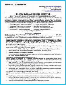 Business Development Executive Resume Marvelous Things To Write Best Business Development