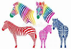 Colorful Zebra Design Colored Zebras Vector Set Stock Vector Illustration Of