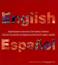 English Spanish Anatomical Chart Desktop Collection