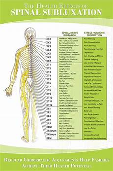 Spinal Pressure Points Chart Nerve Chart Great Chart Showing How Spinal Nerve