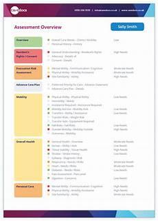 Care Plan Template Sample Care Plan Sample Care Plan Template Amp Example