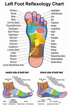 Reflexology Chart Left Foot Foot Reflexology Fact Or Fiction 5 Case Studies Reviewed