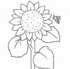 ausmalbilder sonnenblume kostenlose malvorlage