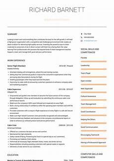Flight Attendant Job Description Resume Sample Flight Attendant Resume Samples And Templates Visualcv