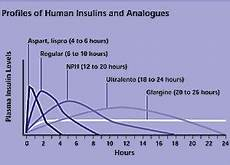 Lantus Peak Times Chart Insulin Peak Times Graph Images Frompo 1