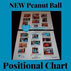 Peanut Ball Chart New Peanut Ball Chart Premier Birth Tools