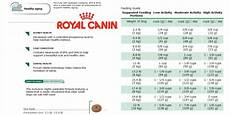 Royal Canin Golden Retriever Puppy Food Feeding Chart Class Is In Session Royalcanin Health Nutrition