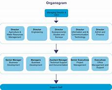 Firm Organization Chart Organizational Structure Creative Consultants