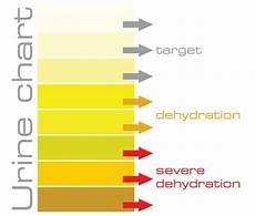 Dehydration Chart Urine Chart How To See If You Are Hydrated Pinterest