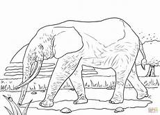 forest elephant coloring page free printable
