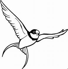 Malvorlagen Vogel Kostenlos Vogel Malvorlagen Kostenlos Zum Ausdrucken Ausmalbilder