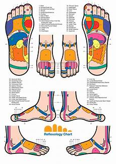 Reflexology Charts Free Download 31 Printable Foot Reflexology Charts Amp Maps ᐅ Templatelab