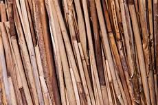 Bamboo Texture Bamboo Lagging Texture