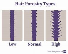 Hair Porosity Chart Hair Classification Type Porosity Density And Ph