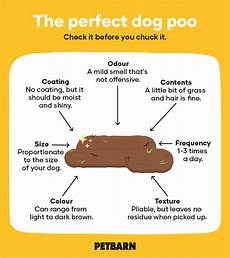 Dog Stool Colour Chart How To Tell If It S A Healthy Dog Poo Petbarn