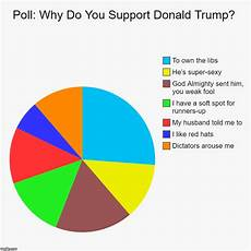Poll Chart Maker Poll Why Do You Support Donald Trump Imgflip