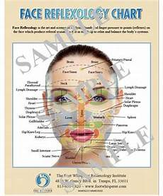 Face Reflexology Chart Face Reflexology Chart Digital