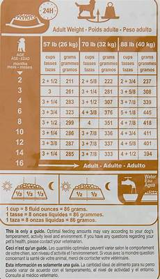 Royal Canin Golden Retriever Puppy Food Feeding Chart Puppy Feeding Schedule 2 Months Goldenacresdogs Com