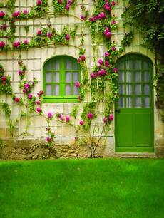 Photo Background Designs Customize Washable Wrinkle Free Flower Green Door