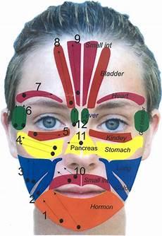 Face Reflexology Chart Facial Reflexology Ageless By Glynis Barber