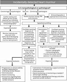 Pda Comparison Chart Flow Diagram Of The General Approach To Evaluating
