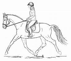 posture in riders