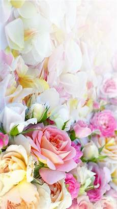Flower Wallpaper For Home Screen by Vintage Home Screen Wallpaper Home Depot