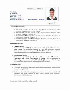 Cv Template Nz Resume Format Resume Format New Zealand