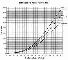 Gestational Size Chart Percentile Estimation Of Fetal Weight
