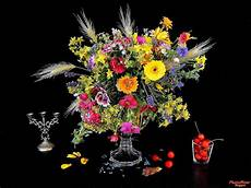 flower wallpaper photo new top hd flowers wallpapers 2014 amazing photo