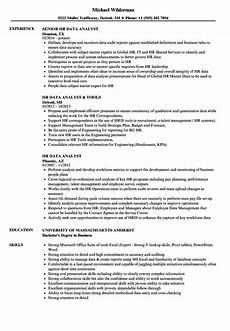 Experienced Hr Analyst Resume Hr Data Analyst Resume Samples Velvet Jobs