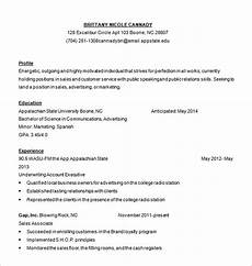 Online Resume Services 6 Customer Service Resume Templates Pdf Doc Free