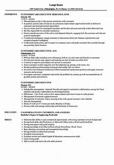 Customer Relationship Executive Resume Customer Care Executive Resume Samples Velvet Jobs