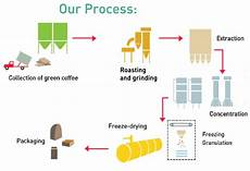 Production Process Cafesca Our Coffee Production Process