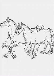 pferde ausmalbilder ausdrucken neu 45 ausmalbilder