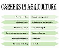 Agricultural Career List Agriculture Career Course Scope Job Opportunities And