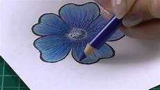 Drawings Of A Flower Colouring Technique With Coloured Pencils Flowers Youtube
