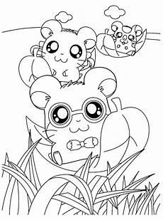 kumpulan gambar untuk belajar mewarnai gambar hamster