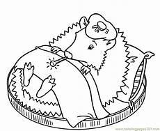 coloring pages sleeping hedgehog mammals gt hedgehogs