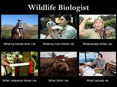 What Do Wildlife Biologists Do I Want To Be A Wildlife Biologist And Observe The Wonders